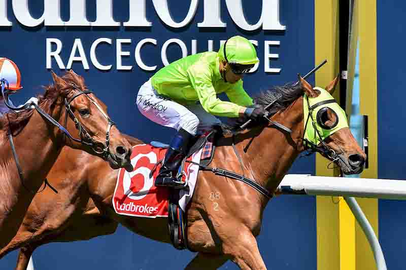Sin To Win salutes at Caulfield