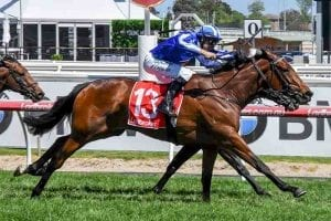 Temple of Bel wins at Caulfield