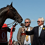 2009 Melbourne Cup Winner