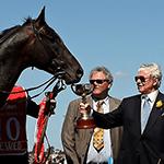 2009 Melbourne Cup Winner