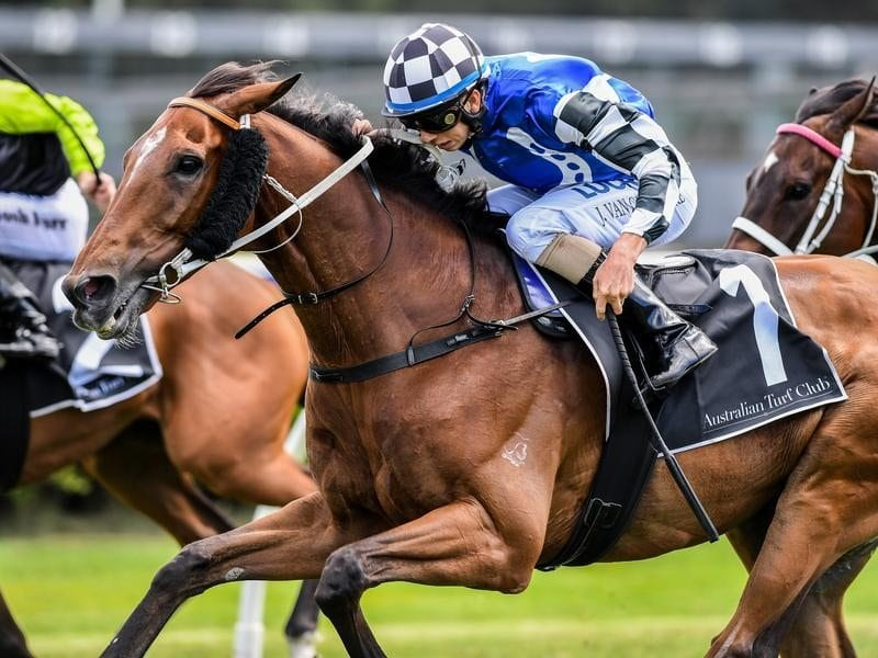Doukhan wins at Canterbury