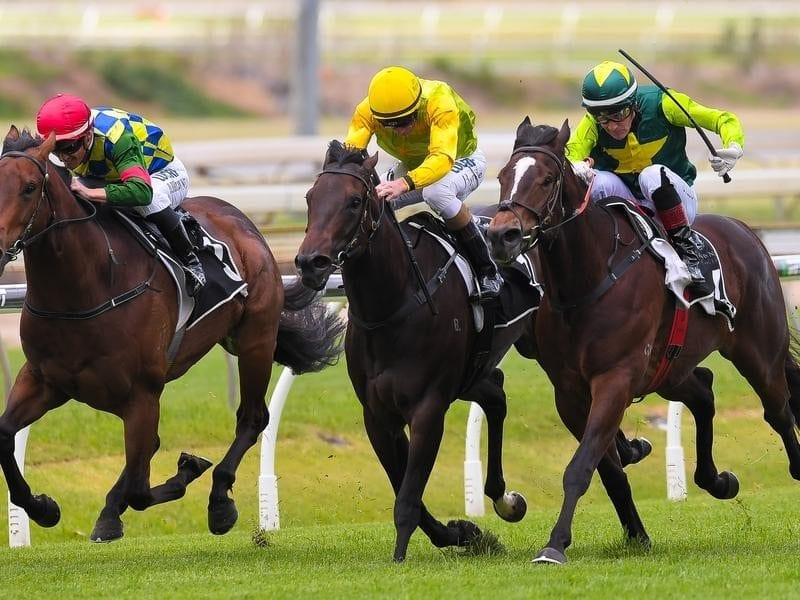 Dazzling Red (outside) wins at Doomben.