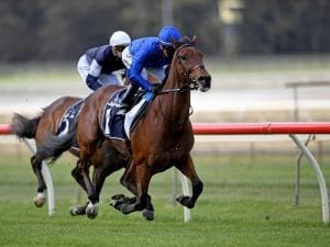 Godolphin calls time on Qewy's career