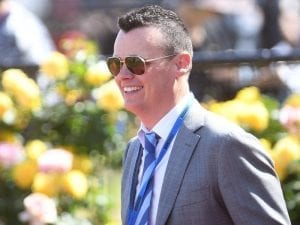 Ball Of Muscle to miss Perth carnival