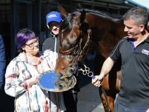 Fourth Cox Plate tantalising for Winx