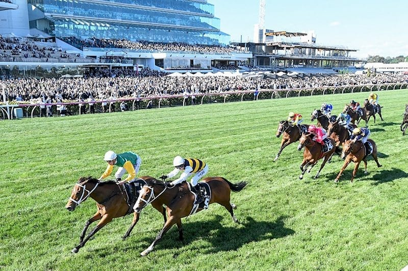 how to put a bet on the melbourne cup
