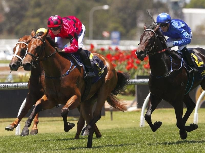 Secret Lady wins the Golden Gift at Rosehill