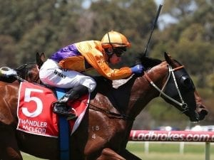 Sandown pair destined for higher company