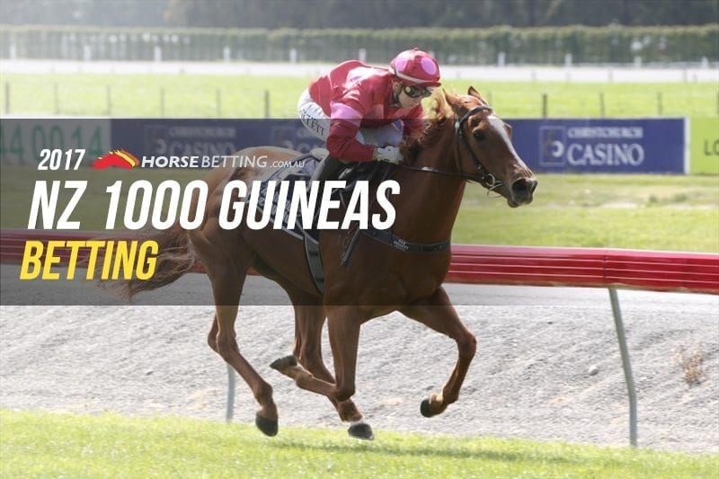 NZ 1000 Guineas betting