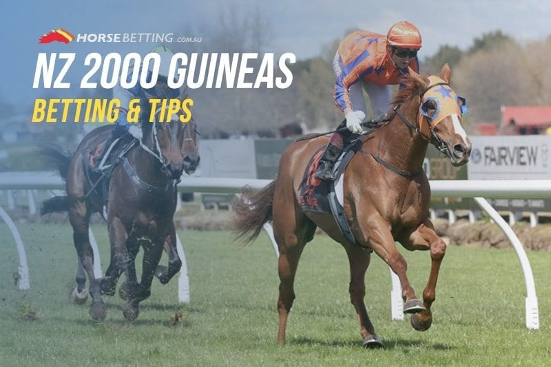 NZ Guineas tips