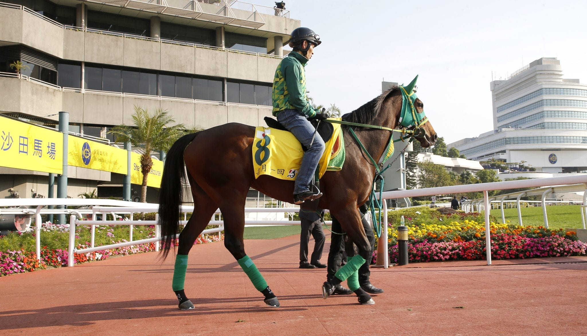 Once In A Moon trackwork HK Friday morning