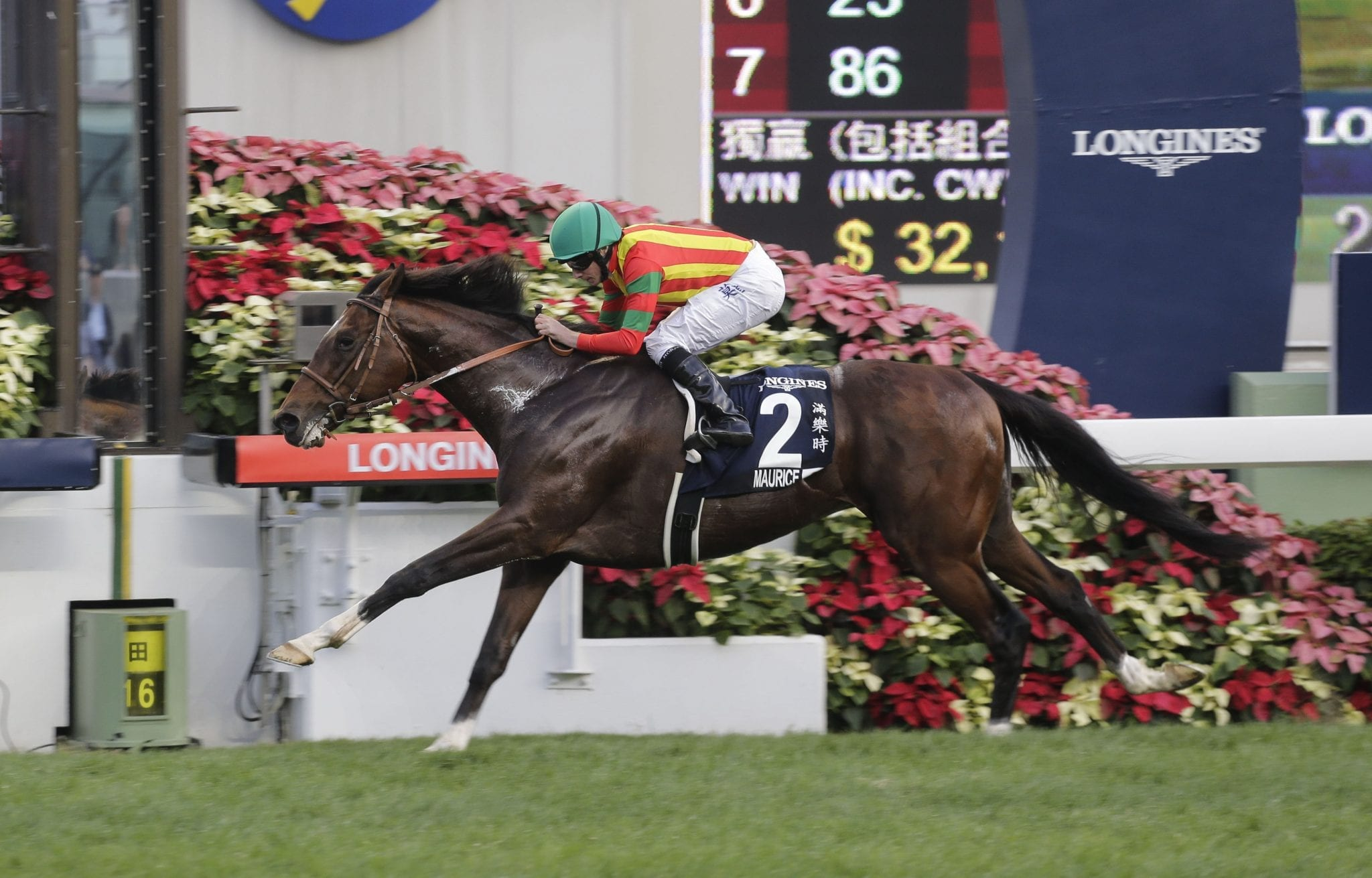 Maurice winning the 2016 G1 Hong Kong Gold Cup