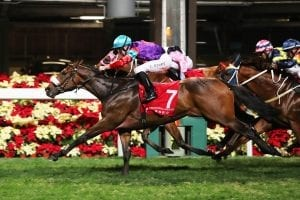 Singapore Sling & Tommy Berry