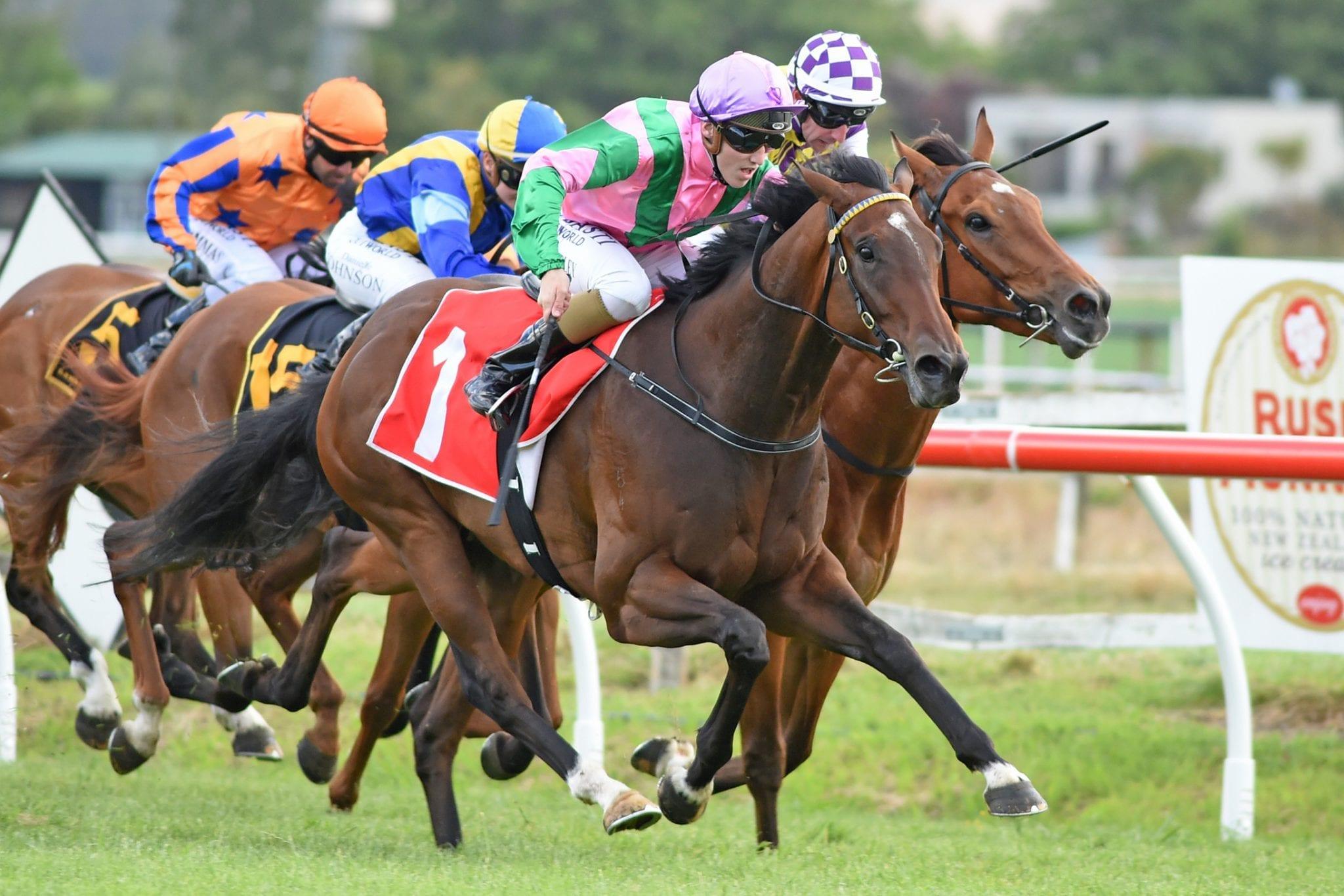 Aero De Paris winning at Hawkes Bay