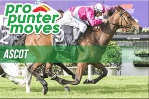 Ascot market movers for Wednesday, February 21