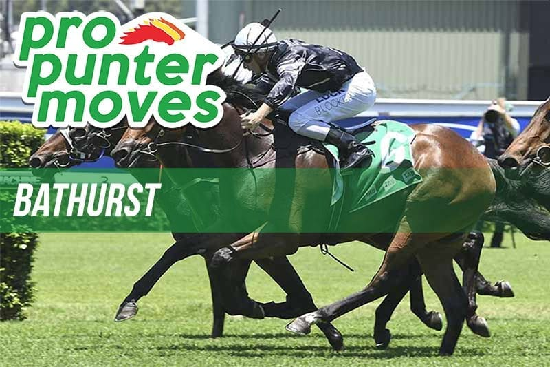 Bathurst Market Movers