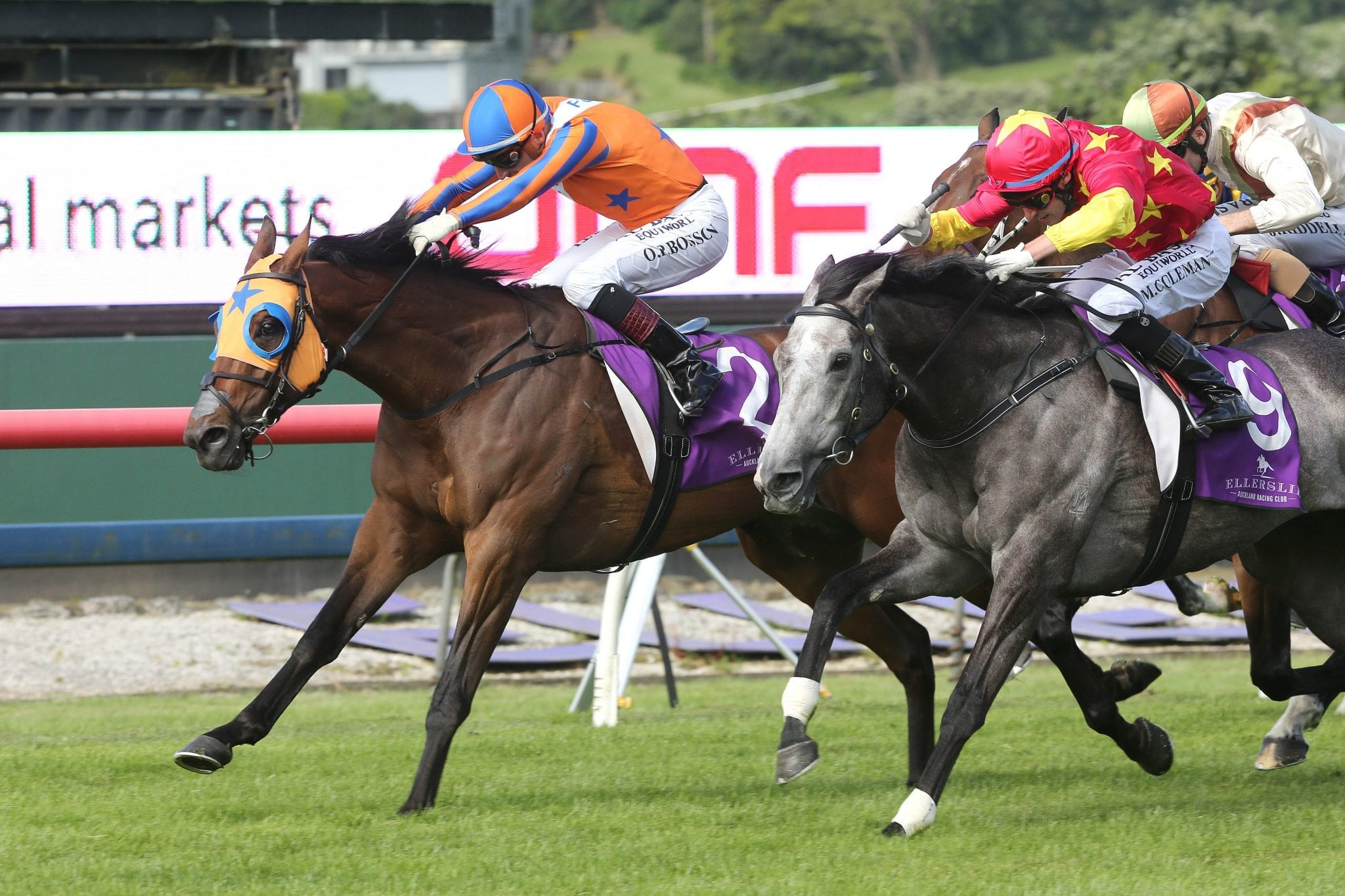 Te Akau Racing's Chance To Dance