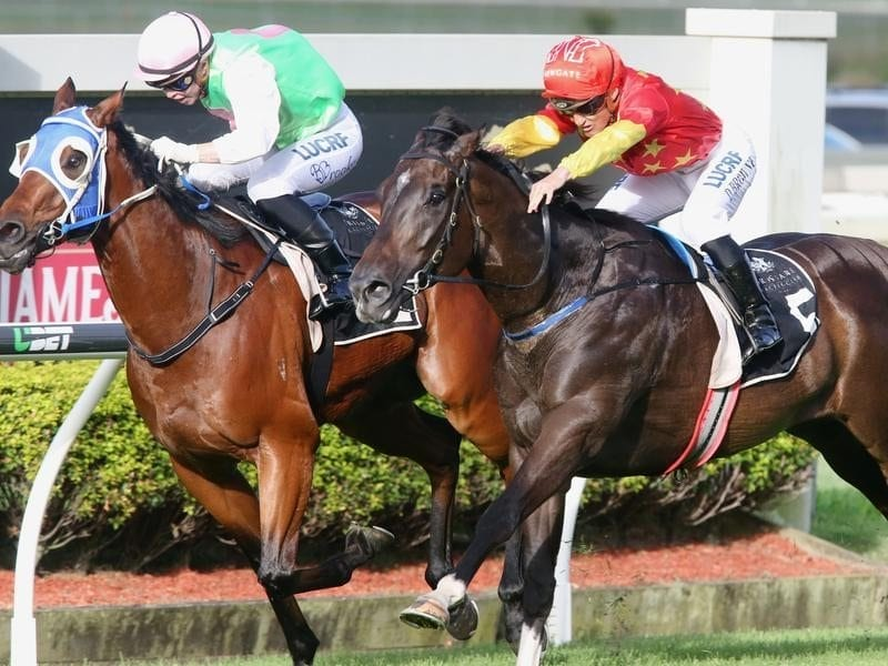 Monsieur Gustave wins the George Moore Stakes