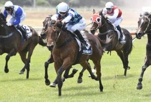 Endowment winning at Whangarei