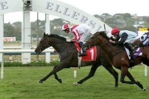 Formidable won the Listed 3yo Salver at Ellerslie