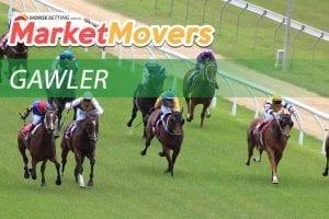 Gawler market movers