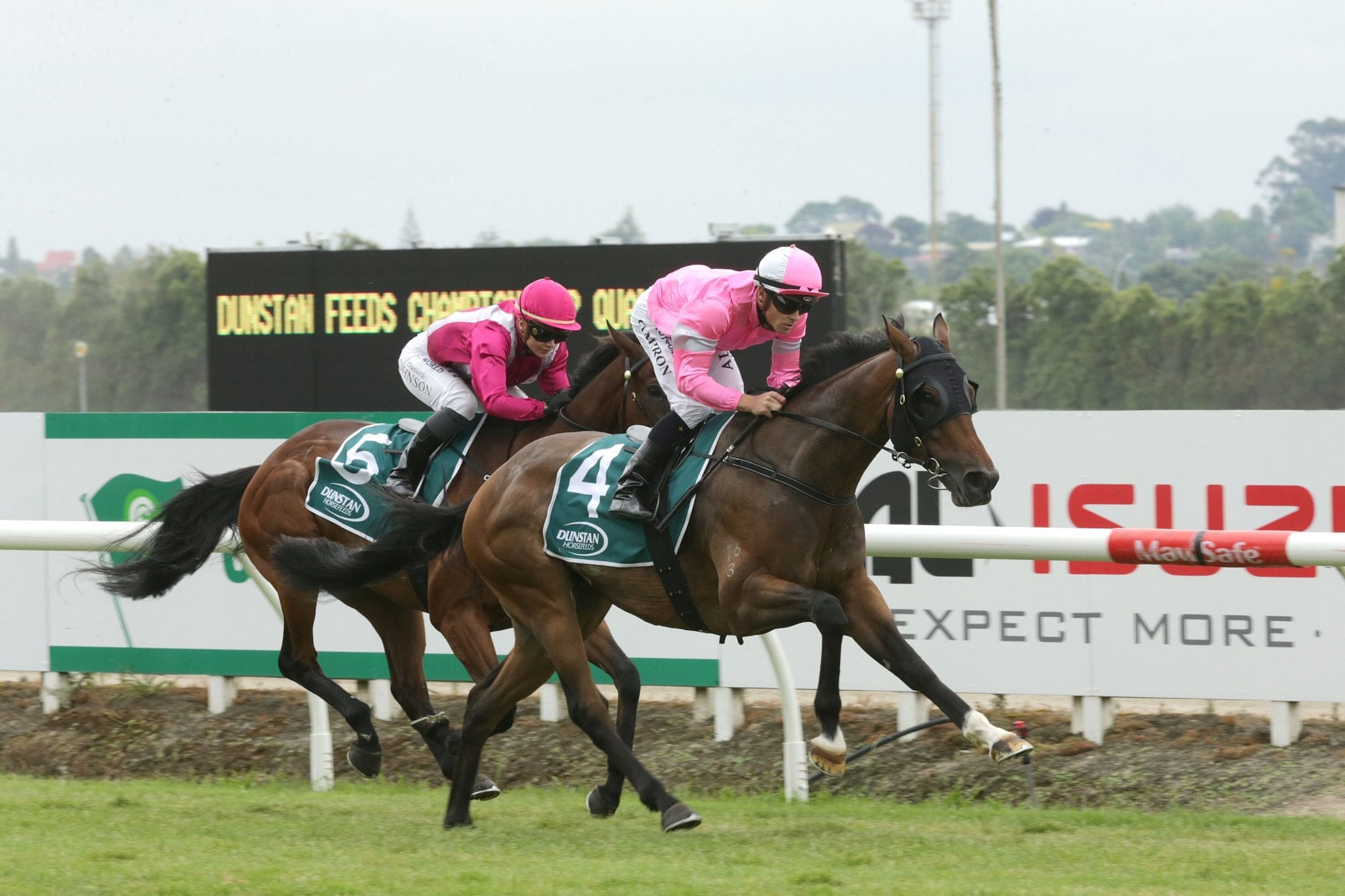 Highlad winning at Te Rapa