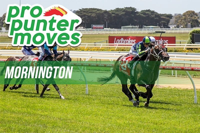 Mornington Market Movers
