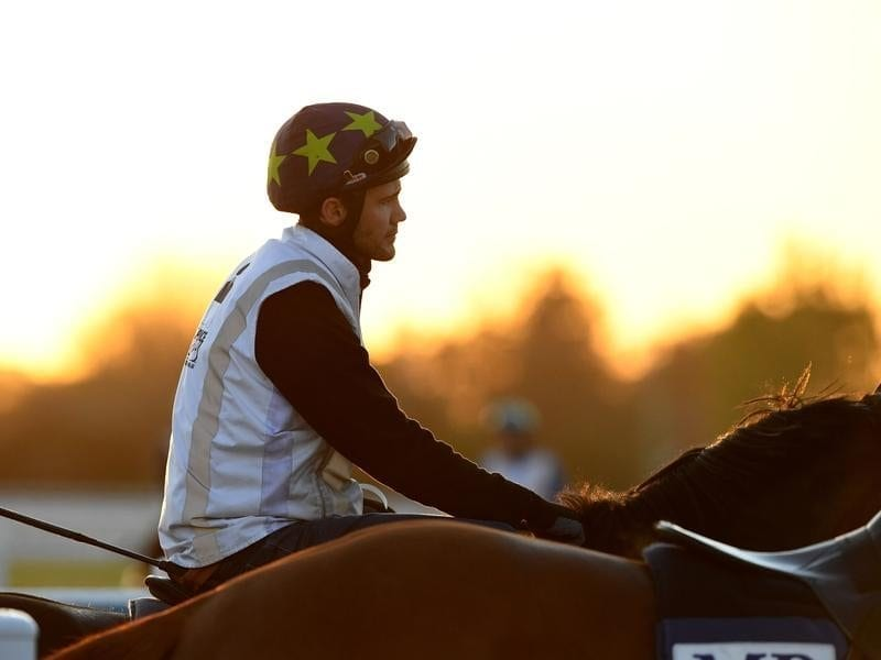 Jockey Michael Walker takes a horse out for a light session.