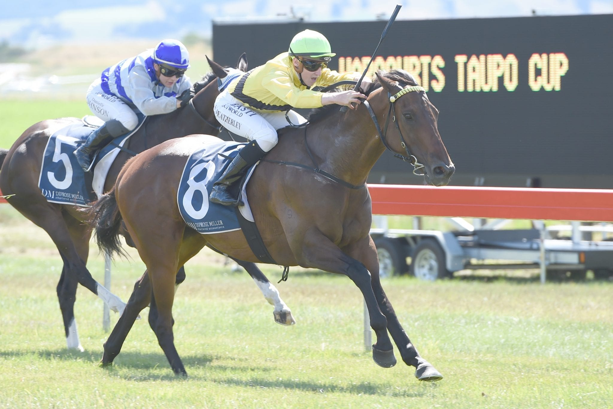 Nothing Trivial winning the 2017 Taupo Cup