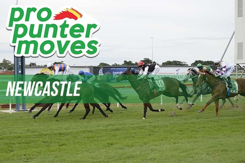 Newcastle Market Movers