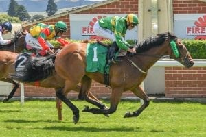 Patrick Erin winning at Ellerslie