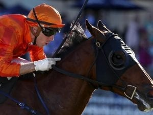Dreamforce resumes in style at Randwick
