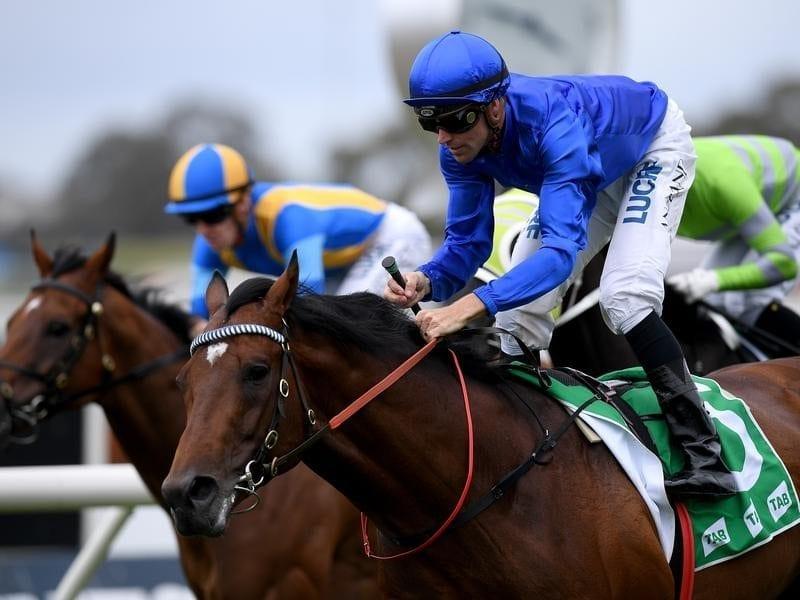 Villiers Stakes favourite Interlocuter.