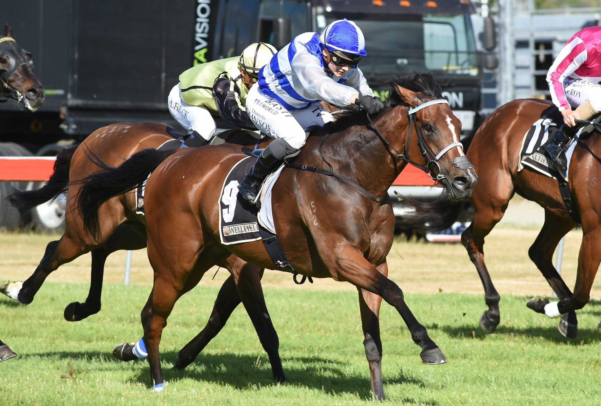 Seraphim overcomes pre-race mishap to win yesterday at Trentham