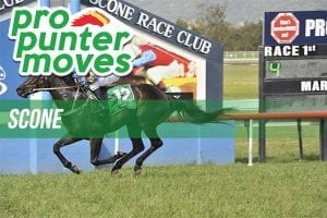 Firmers & drifters for Scone Cup Day, Friday, May 11