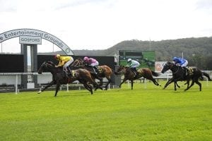 Star Of Monsoon winning at Gosford