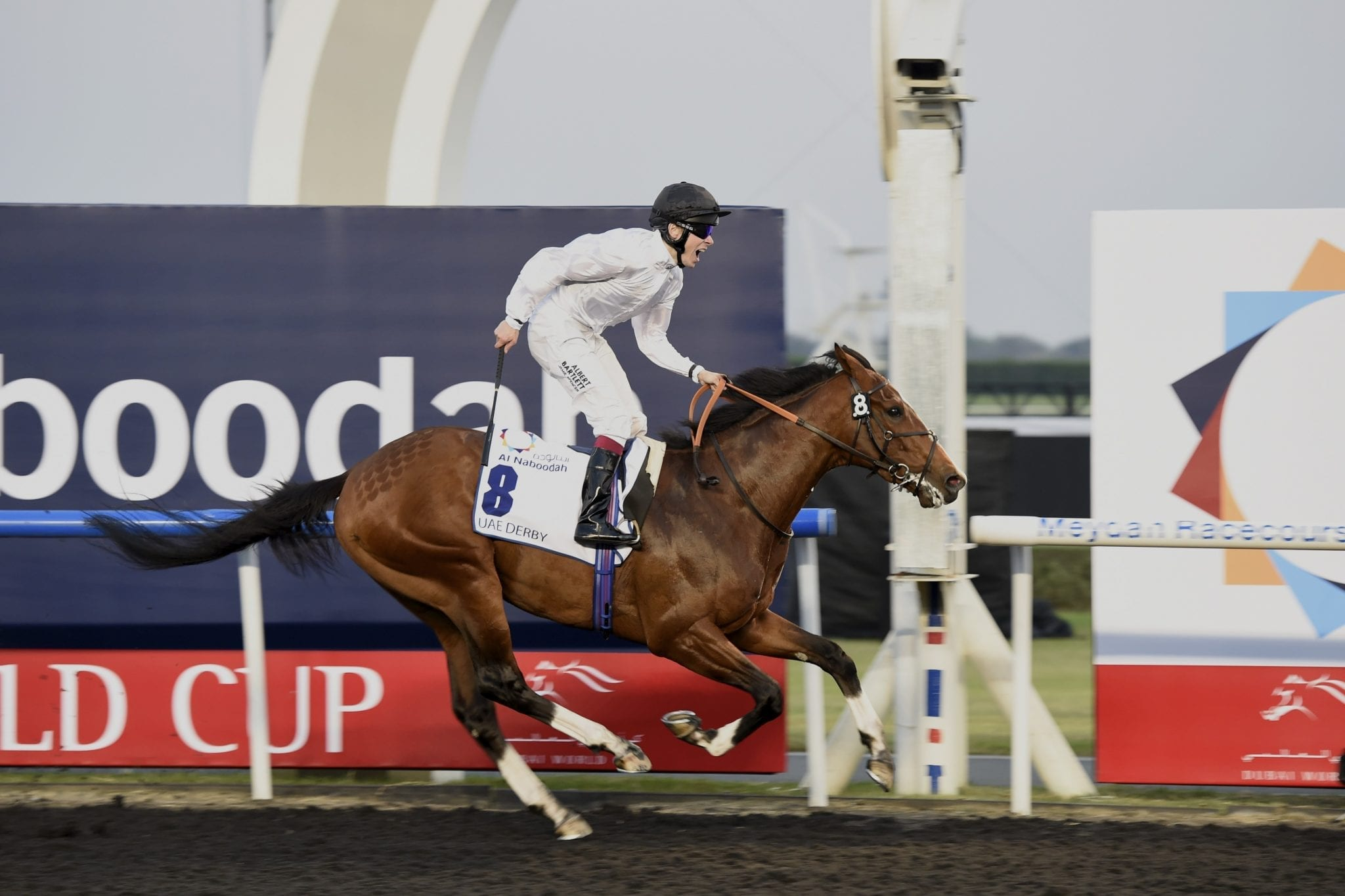 Toast Of New York winning the 2014 UAE Derby