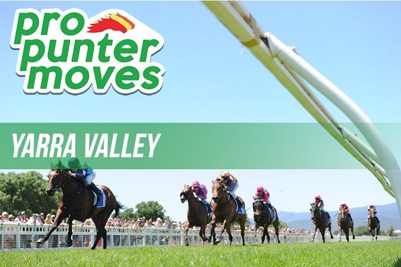 Yarra Valley Market Movers