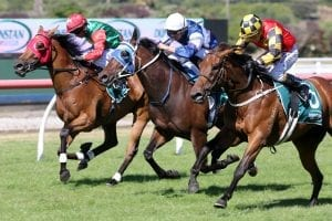 Yearn winning with Trudy Thornton in the saddle