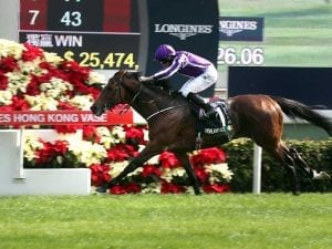 Highland Reel wins Hong Kong Vase