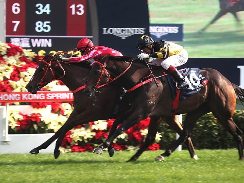 Mr Stunning Nash Rawiller win Hong Kong Sprint