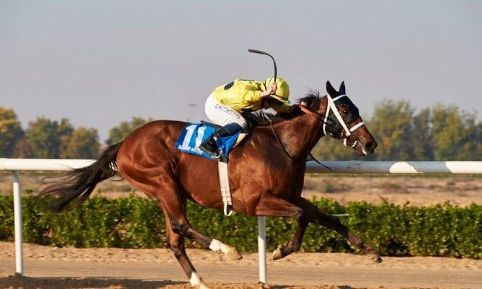 Say No More winning at Sharjah