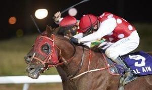 Sheikh Down winning at Al Ain