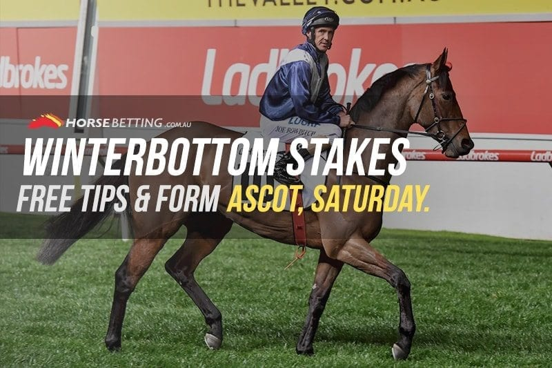 Winterbottom Stakes tips