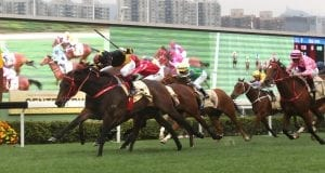 DB Pin winning the Centenary Sprint Cup
