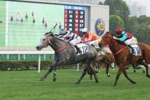 Fifty Fifty will contest the HK G1 Stewards Cup