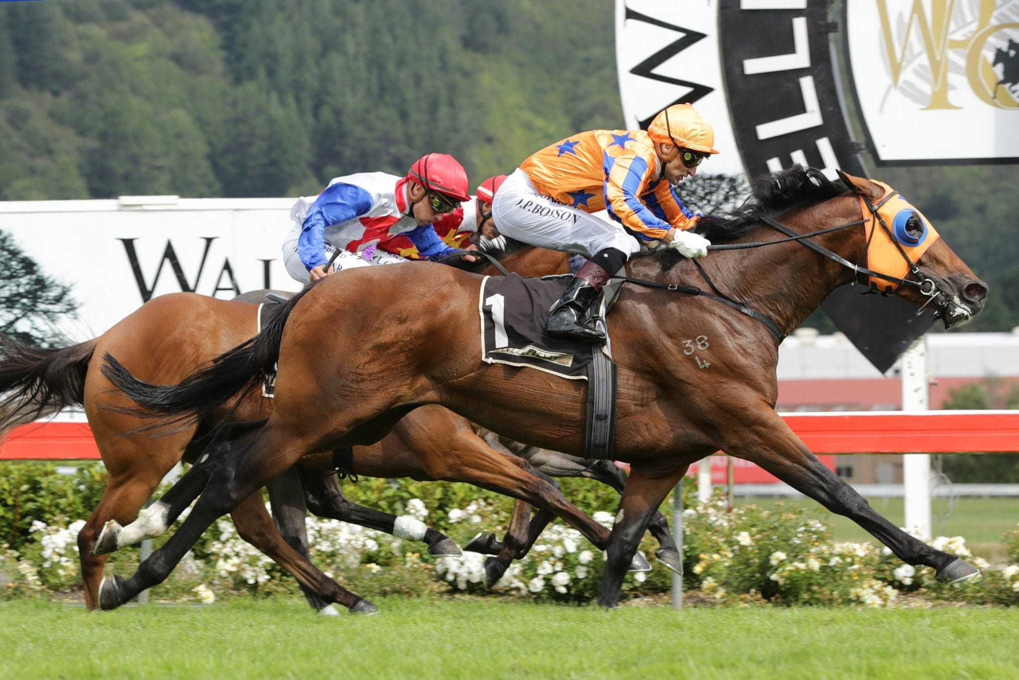 Age Of Fire winning Levin Classic