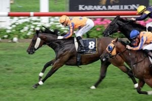 Avantage wins Karaka Million