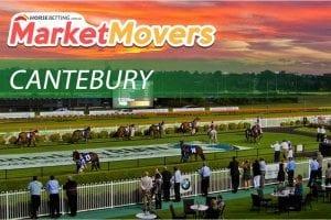 Canterbury market movers