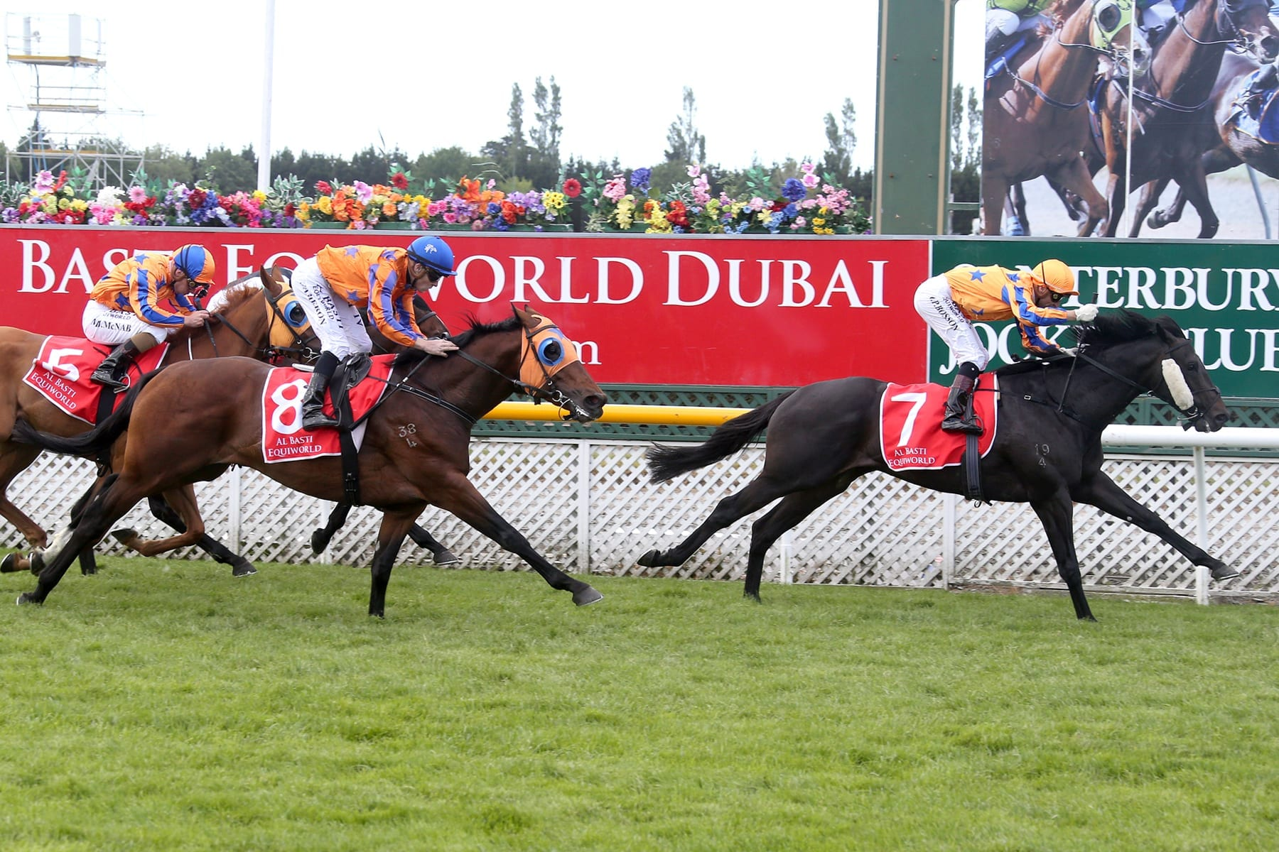 Embellish winning the NZ Guineas